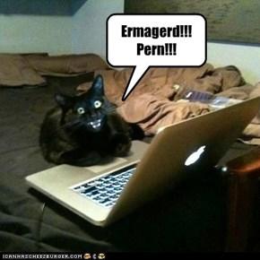 Ermagerd!!!! Pern!!!