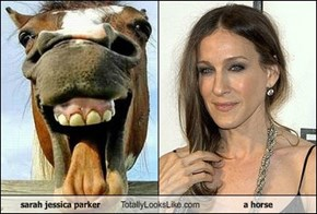 sarah jessica parker Totally Looks Like a horse