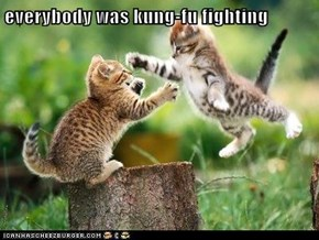 everybody was kung-fu fighting