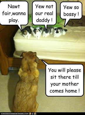 You will please sit there till your mother comes home !