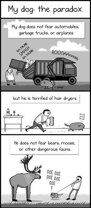 The Dog Paradox