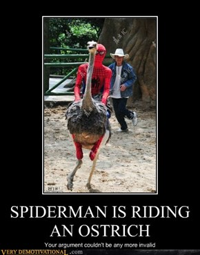 SPIDERMAN IS RIDING AN OSTRICH