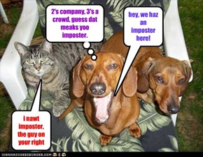 hey, we haz an imposter here!