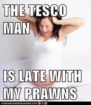 THE TESCO MAN  IS LATE WITH MY PRAWNS