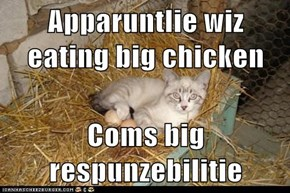 Apparuntlie wiz eating big chicken  Coms big respunzebilitie