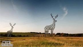 Deer Towers WIN