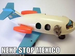 NEXT STOP MEXICO
