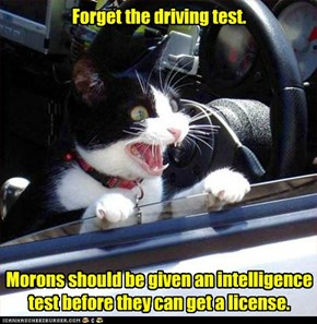Forget the driving test.