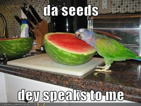 da seeds  dey speaks to me