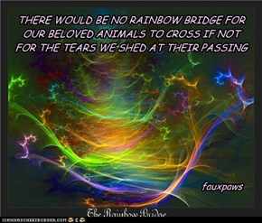 THERE WOULD BE NO RAINBOW BRIDGE FOR OUR BELOVED ANIMALS TO CROSS IF NOT FOR THE TEARS WE SHED AT THEIR PASSING