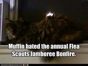 Muffin hated the annual Flea Scouts Jamboree Bonfire.