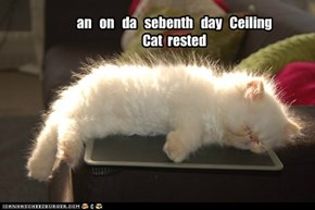 an   on   da   sebenth   day   Ceiling Cat  rested
