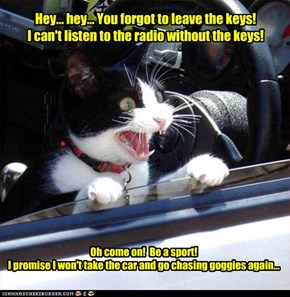 Hey... hey... You forgot to leave the keys! I can't listen to the radio without the keys!