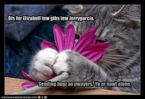 Fur Elizabuff an Jerrygarcia