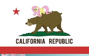 Bronies Of Northern California Flag