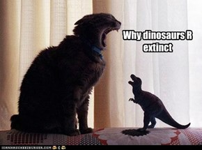 Why dinosaurs R extinct