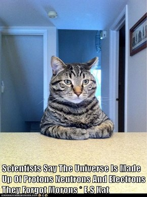 Scientists Say The Universe Is Made Up Of Protons Neutrons And Electrons They Forgot Morons * E.S Kat