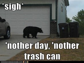 *sigh*  'nother day, 'nother trash can