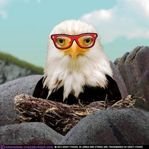 nerdbird!