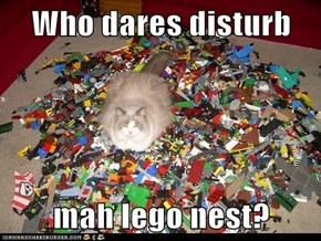 Who dares disturb  mah lego nest?