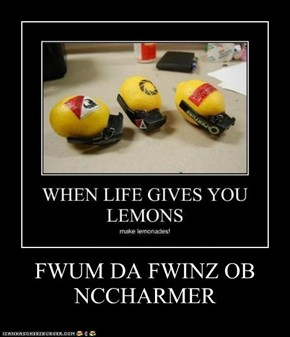 FWUM DA FWINZ OB NCCHARMER