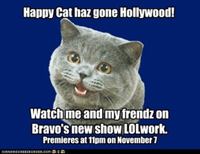 Happy Cat haz gone Hollywood!
