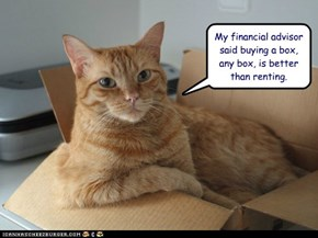 My financial advisor said buying a box, any box, is better than renting.