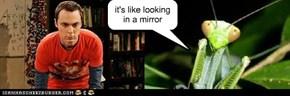 it's like looking in a mirror