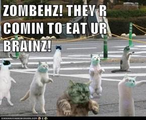 ZOMBEHZ! THEY R COMIN TO EAT UR BRAINZ!