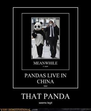 THAT PANDA
