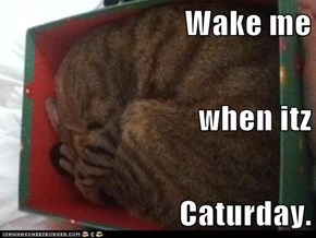 Wake me when itz Caturday.