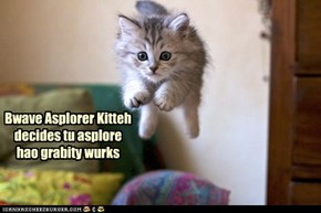 Bwave Asplorer Kitteh decides tu asplore hao grabity wurks