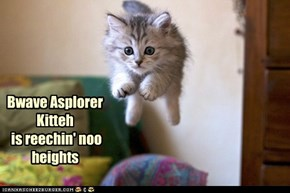 Bwave Asplorer Kitteh  is reechin' noo heights