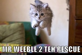 MR WEEBLE 2 TEH RESCUE