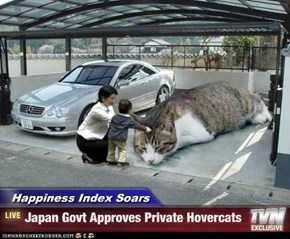 Happiness Index Soars - Japan Govt Approves Private Hovercats