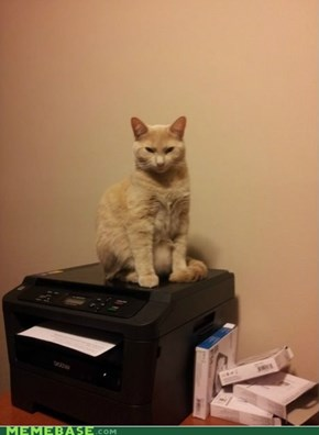 He was upset that the printer is put in his spot.