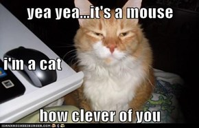 yea yea...it's a mouse i'm a cat how clever of you