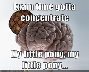 Exam time gotta concentrate  My little pony, my little pony...