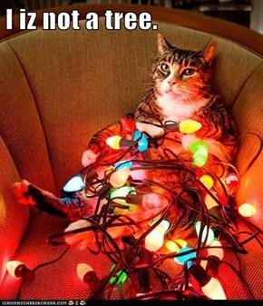 I iz not a tree.