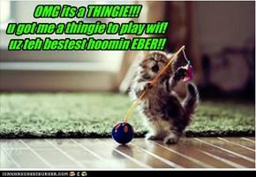 OMG its a THINGIE!!! u got me a thingie to play wif! uz teh bestest hoomin EBER!!