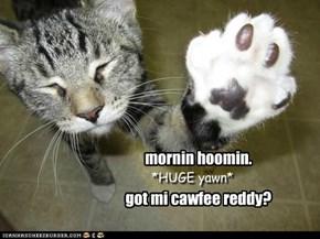 mornin hoomin.  got mi cawfee reddy?