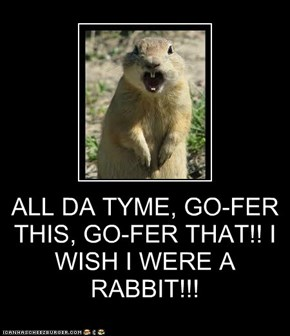 ALL DA TYME, GO-FER THIS, GO-FER THAT!! I WISH I WERE A RABBIT!!!