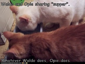 "Waldo and Opie sharing ""supper"".   Whatever Waldo does, Opie does."
