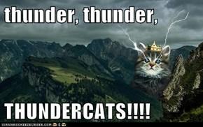 thunder, thunder,  THUNDERCATS!!!!