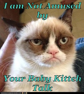 I am Not Amused by  Your Baby Kitteh Talk