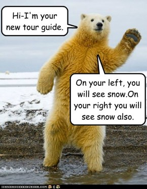 Hi-I'm your new tour guide.