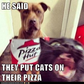 HE SAID  THEY PUT CATS ON THEIR PIZZA
