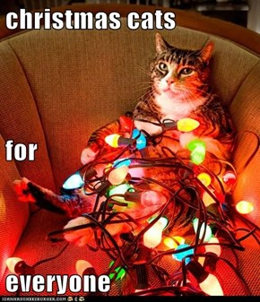christmas cats for  everyone