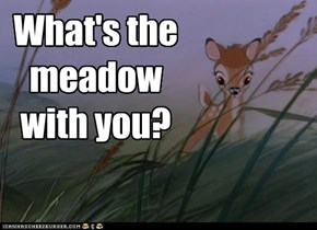 Su much Phun: What's the meadow with you?