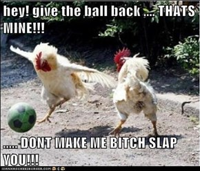 hey! give the ball back .... THATS MINE!!!    ..... DONT MAKE ME BITCH SLAP YOU!!!
